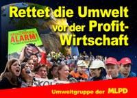 29.11.19 Streik + Umweltkampftag:  Entweder die Mutter Erde stirbt oder der Kapitalismus!